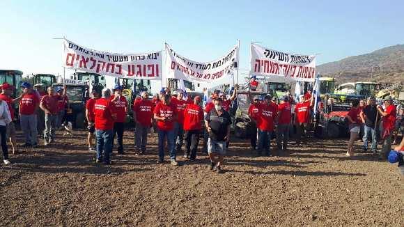 בוקר של מחאת החקלאים בגליל העליון