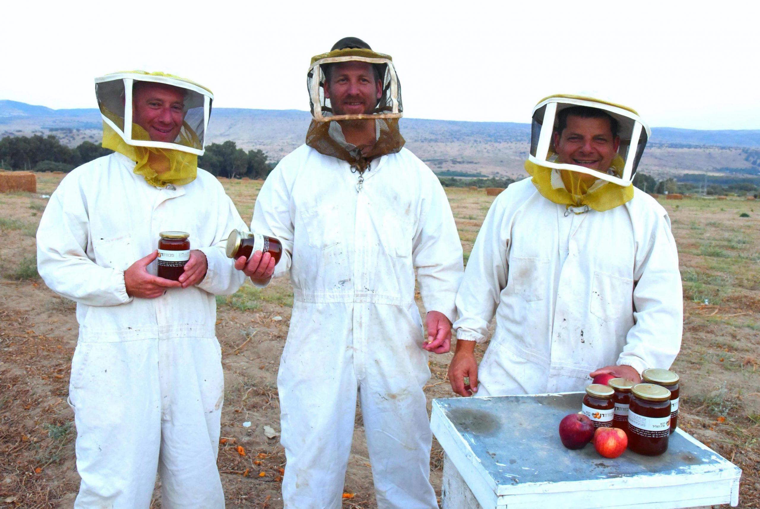 דבש – כל המספרים החשובים